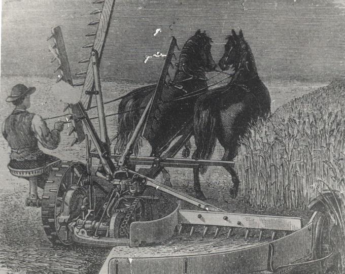 Начало немецкой колонизации юга России